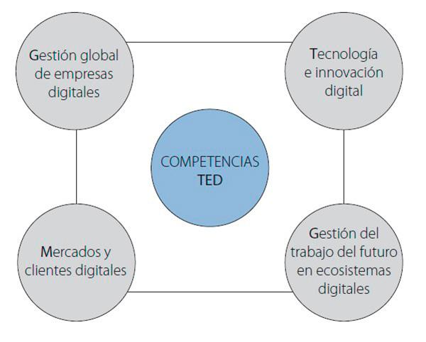 competencias digitales