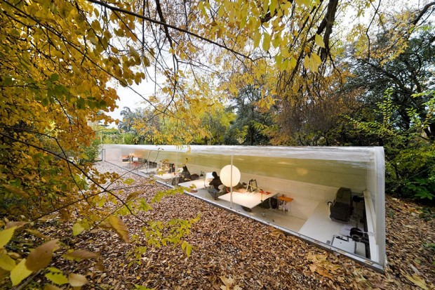 Oficinas modernas Selgas Cano bajo los árboles