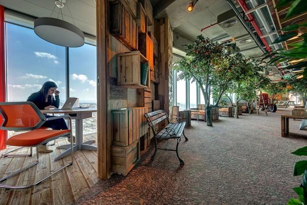 Espacios naturales en las oficinas de google
