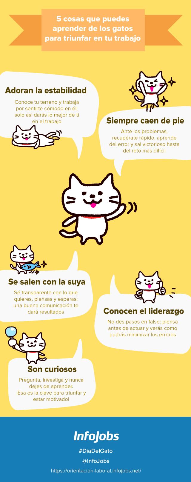 5 talentos que puedes aprender los gatos para triunfar en el trabajo